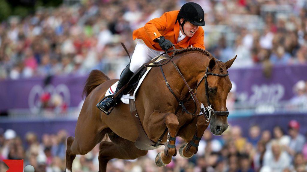 Million-Horse-banner blog-sfeer-paardenhaar-sieraad-jumping schroder tubbergen- schroder - gerco schroder - wim schroder - ben schroder - Tom Brinkman
