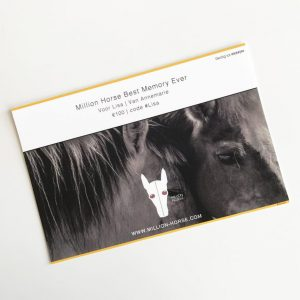 Cadeuakaart-Giftcard-Million-Horse-bestmemoryever-paardenhaar armband - Million Horse - paardenhaar sieraad – paardenhaar armband zilver – paardenhaar– paardenhaar armband goedkoop –– million-horse – millionhorse – million-horses – armband van paardenhaar laten maken – paarden armband – sieraad paardenhaar – vlecht paardenhaar – paardenhaarsieraad – armband paardenhaar zelf maken
