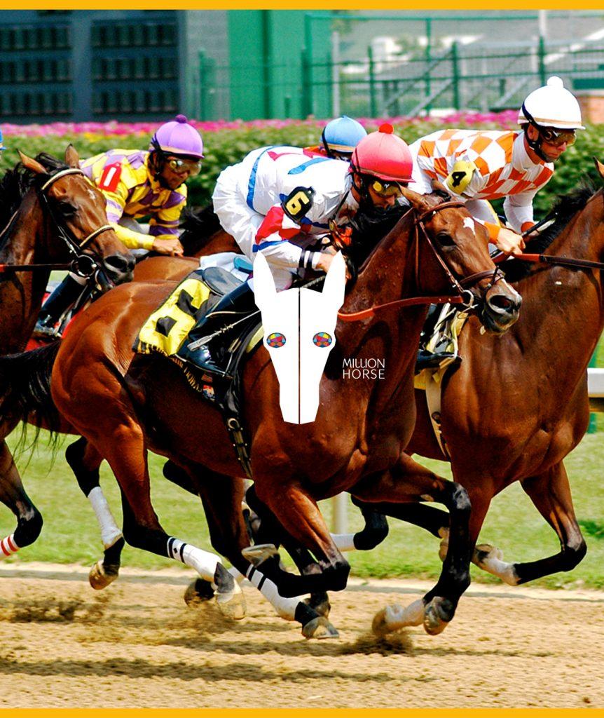 Cadeuakaart-Giftcard-Million-Horse-gefeliciteerd-paardenhaar armband - Million Horse - paardenhaar sieraad – paardenhaar armband zilver – paardenhaar– paardenhaar armband goedkoop –– million-horse – millionhorse – million-horses – armband van paardenhaar laten maken – paarden armband – sieraad paardenhaar – vlecht paardenhaar – paardenhaarsieraad – armband paardenhaar zelf maken