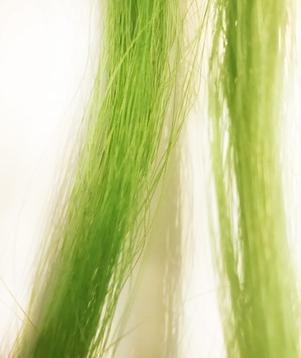 Paardenhaar-armband-Million-Horse-gekleurd-geverfd_groen